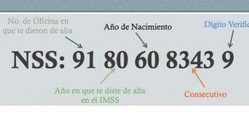 Qué significan los 11 dígitos del NSS o Número de Seguro Social