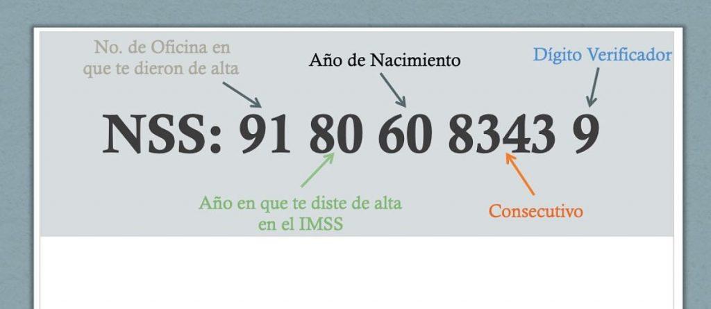 Qué significan los 11 dígitos del NSS o Número de Seguro Social o IMSS