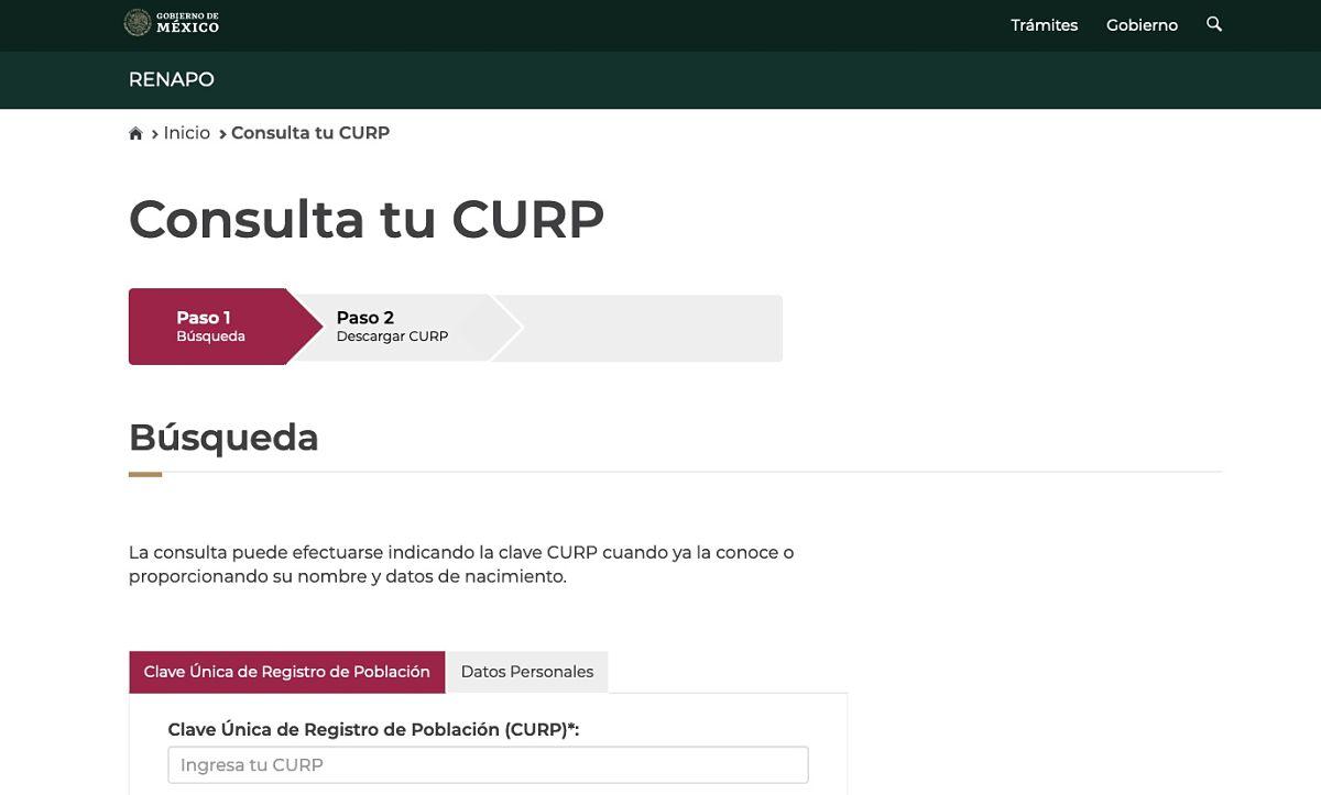 Emprendedores Qué significan los datos de mi CURP es importante saber